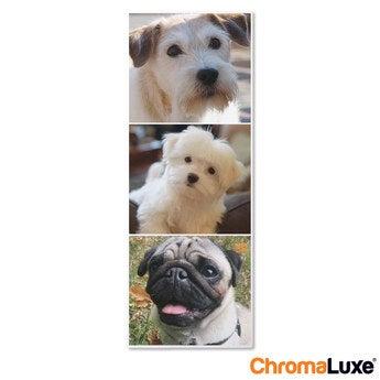 Chromaluxe Fototafel -  Weiß 30x80 cm
