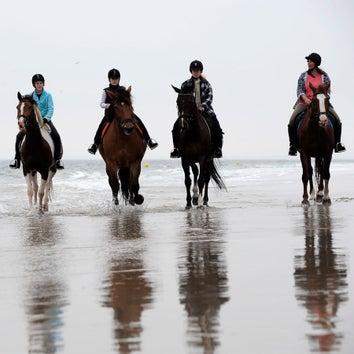 3-uursrit te paard (gevorderd)