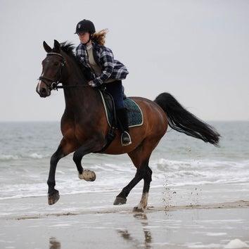 Paardrijden op het strand (gevorderd)
