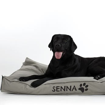 Dog bed with name - M - Taupe