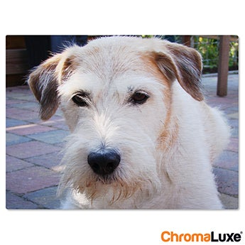 Chromaluxe Aluminium photo - Brushed - 40x30cm