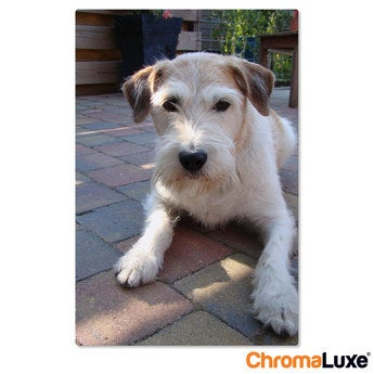 Chromaluxe Fototafel -  Weiß 40x60 cm