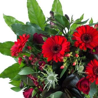 Boeket rode bloemen