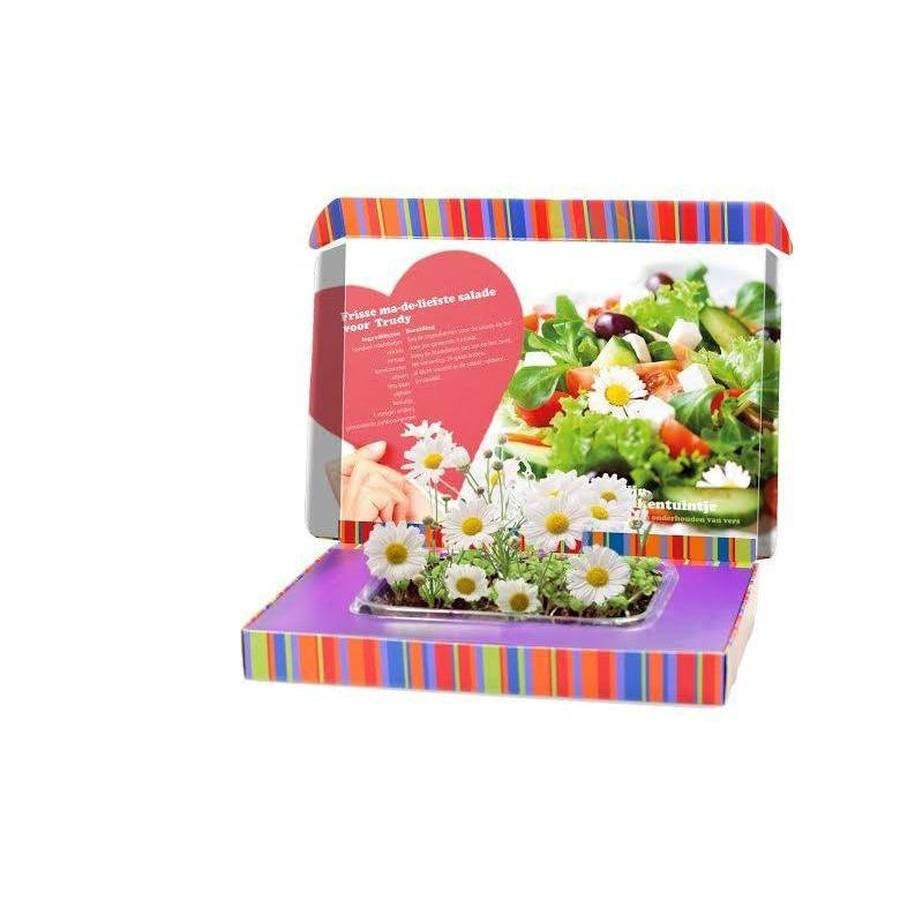 Mein Küchengarten- Gänseblümchen