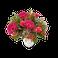 Fleurs - Bouquet de fleurs violettes