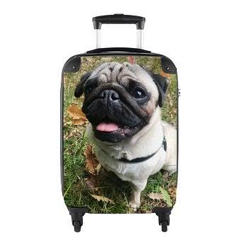 Koffer Handgepäck