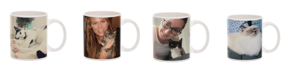 mugs avec photos de chats