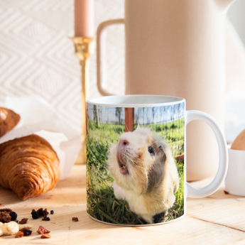 The best gifts featuring your pets